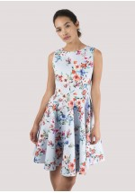 Closet Blue Floral Sleeveless Skater Dress