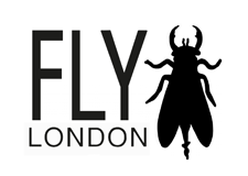 Image result for fly london logo